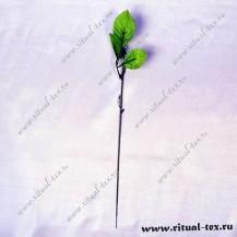 Нога розы 12197  (упаковка 50 шт)